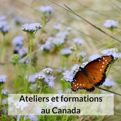 Ateliers et formationsau Canada.png